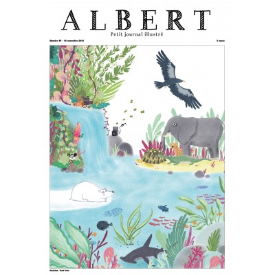 Albert N°46